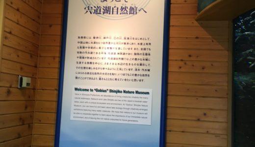 【島根県・遊び場】ゴビウスに行ってきました!