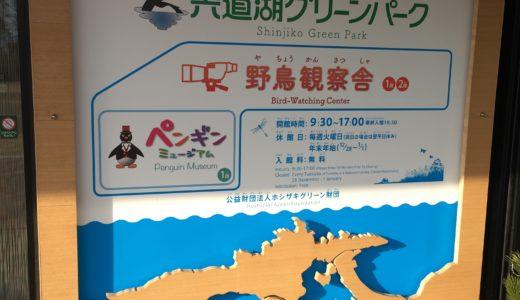 【島根県・遊び場】宍道湖グリーンパークに行ってきた!